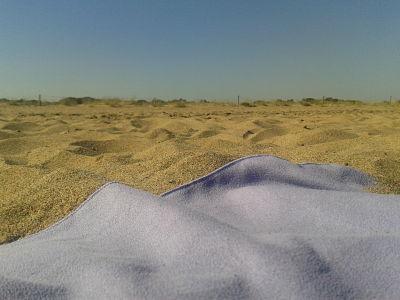 tarde_playa_julio2013