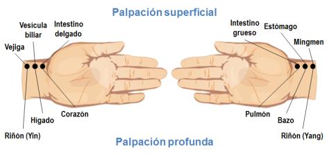 mtc_pulsos_radiales