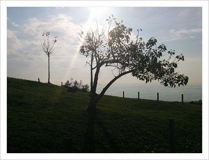 horizonte_dic15